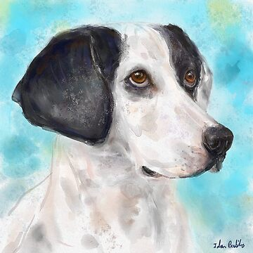 Watercolor Painting of a Black and White Dog on Light Blue Background by ibadishi