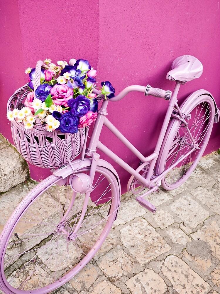 Pink Bicycle by Rae Tucker