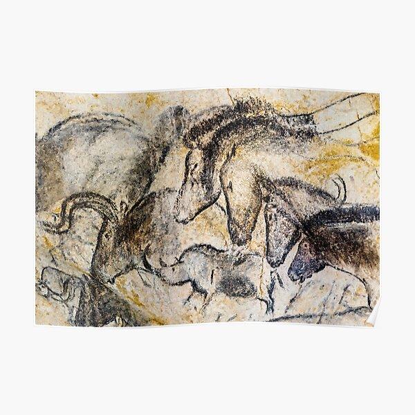 Chauvet Horses Aurochs and Rhinoceros Poster