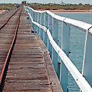 As straight as a dog's hind leg, Carnarvon, Western Australia (Y) by Adrian Paul