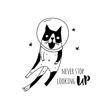 Never stop looking up by Catme