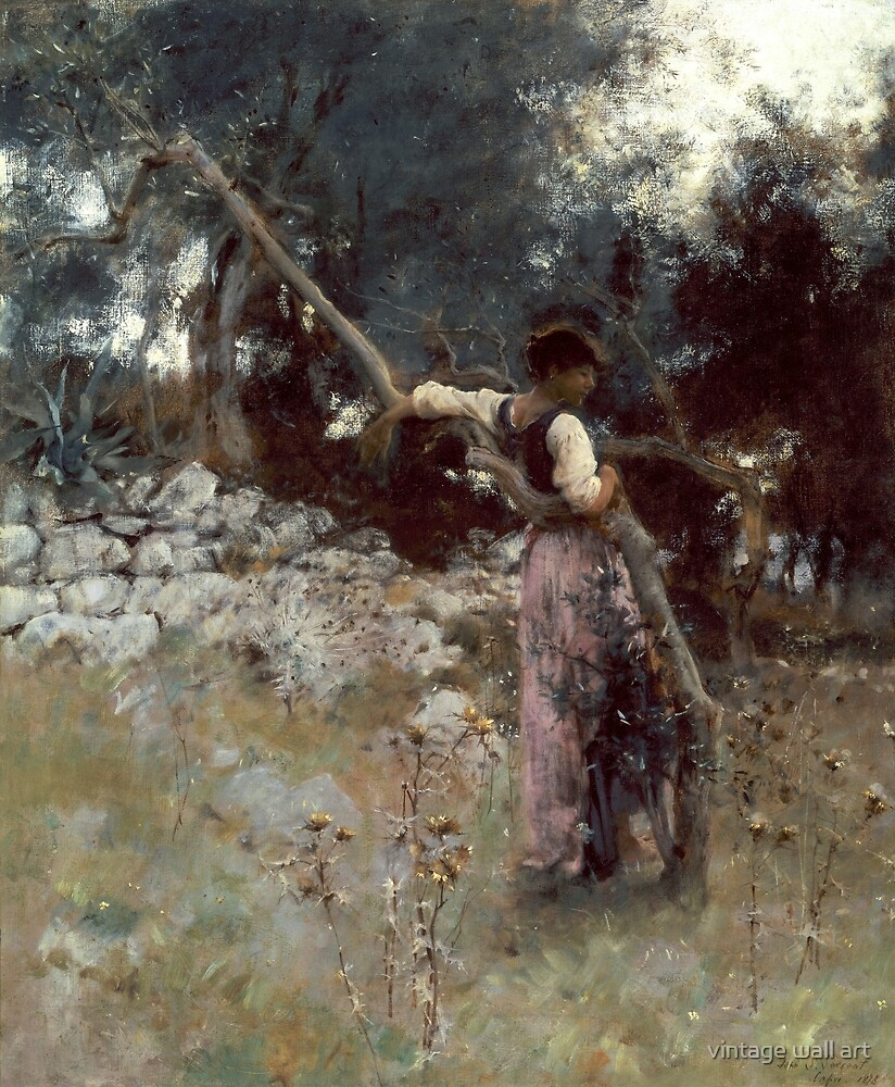 A Capriote by John Singer Sargent, 1878 by fineearth