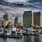 San Diego Harbor by Barbara  Brown