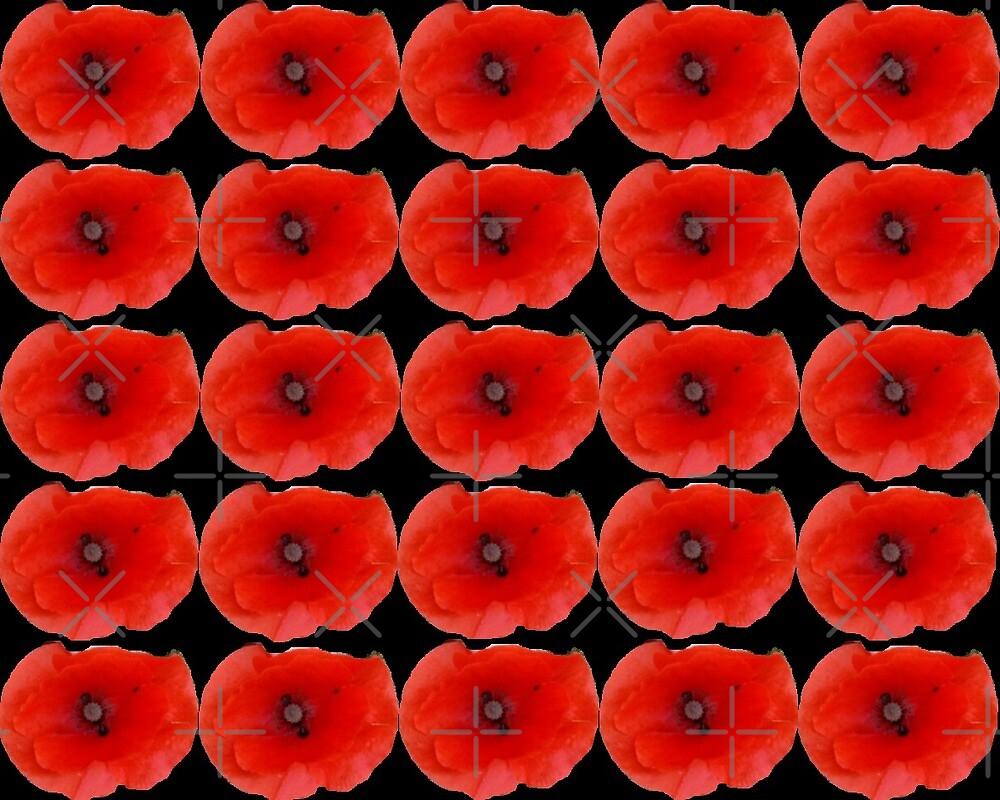 Red Poppy Heads Collection By Miss K L Slomczynski KABFA by KABFA