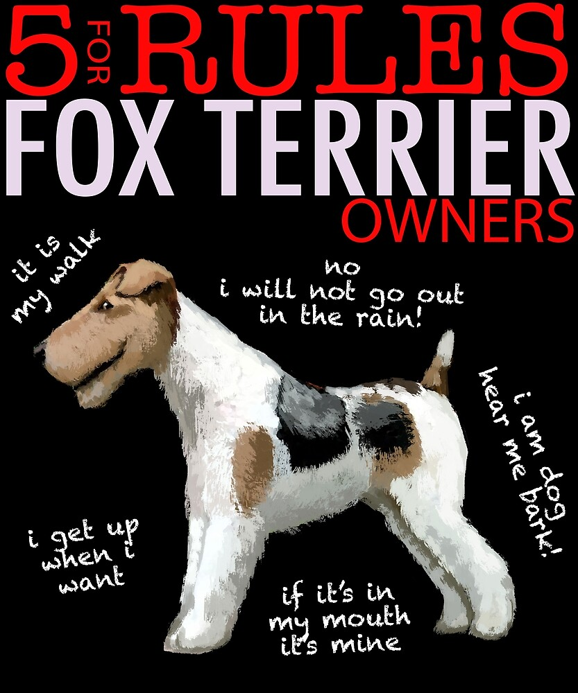 5 Rules for Fox Terrier Owners by MichaelRellov