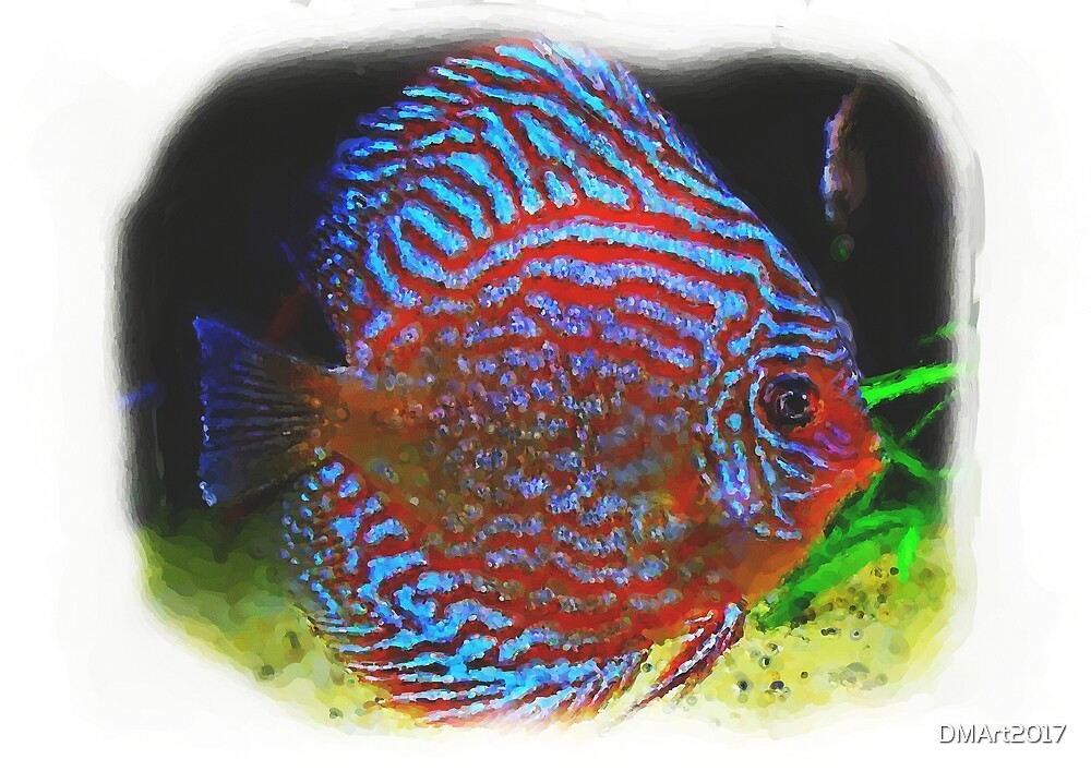 Discus Fish Digital Watercolours by DMArt2017