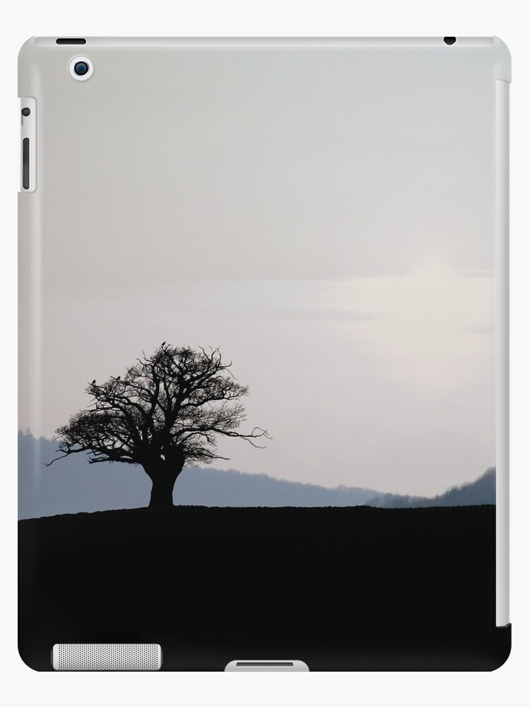 Horizons  by Anthony Thomas