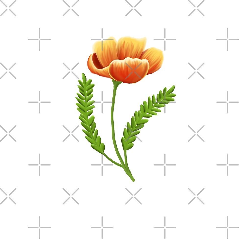 Poppy by pesq