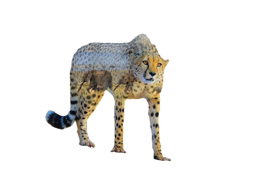 Cheetah - Elephants - Double Exposure by StephMarten