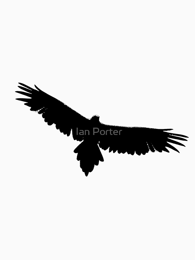 Wedge-tailed Eagle by procrest