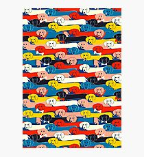 COLORED CUTE DOGS PATTERN 2 Photographic Print