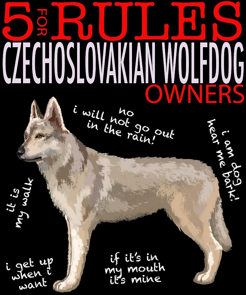 5 Rules for Czechoslovakian Wolfdog Owners by MichaelRellov