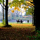 The Rhein River, Germany  by lukelorimer