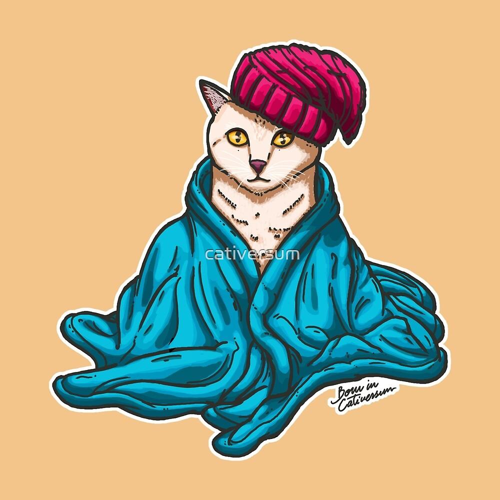 Warm Kitty by cativersum