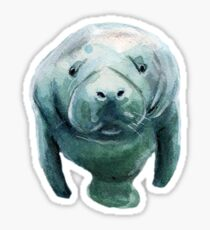 Mister Manatee - No BG Sticker