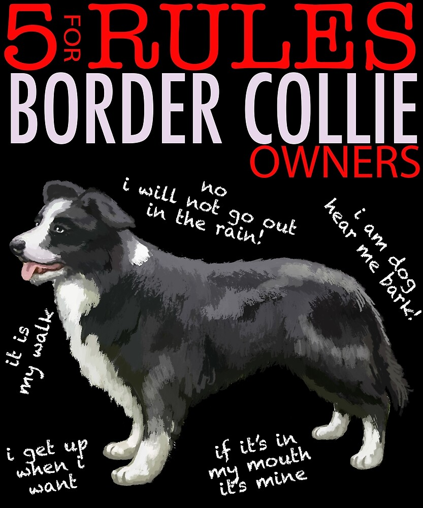 5 Rules for Border Collie Owners by MichaelRellov