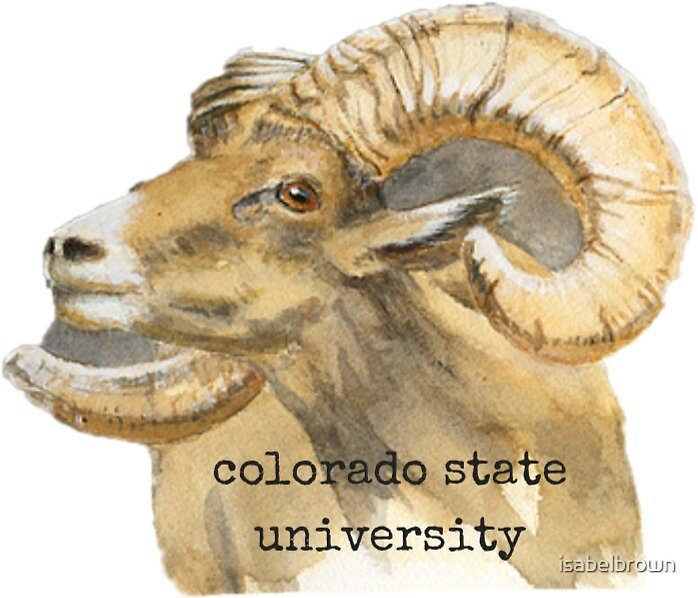 Colorado State University Rams by isabelbrown