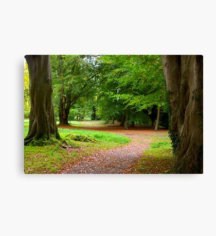 The Leafy Path Canvas Print