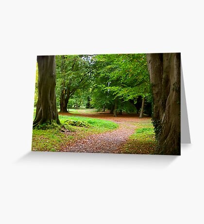 The Leafy Path Greeting Card