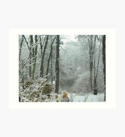 Snow Comes to the  Little Pond  Art Print