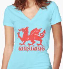 WYSIWYG Dragon Women's Fitted V-Neck T-Shirt