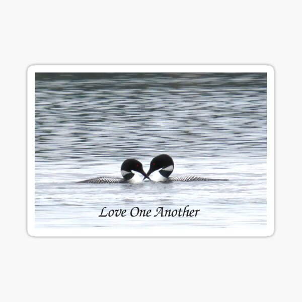 Loony Lovebirds ~ Love One Another Sticker