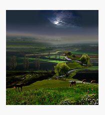 Calmness Photographic Print