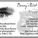 Business Card by Ryan Piercey