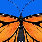 Butterfly Nr 1 - Wanderer (Monarch) Butterfly Variations by Heatherian