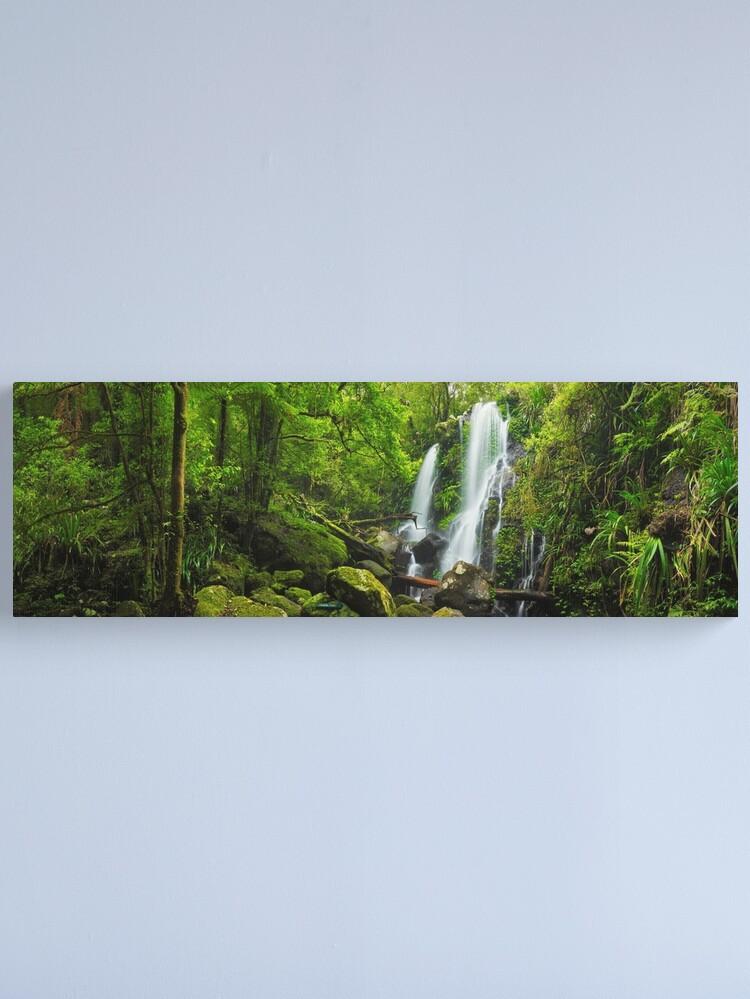 Alternate view of Chalahn Falls, Lamington National Park, Queesland, Australia Canvas Print