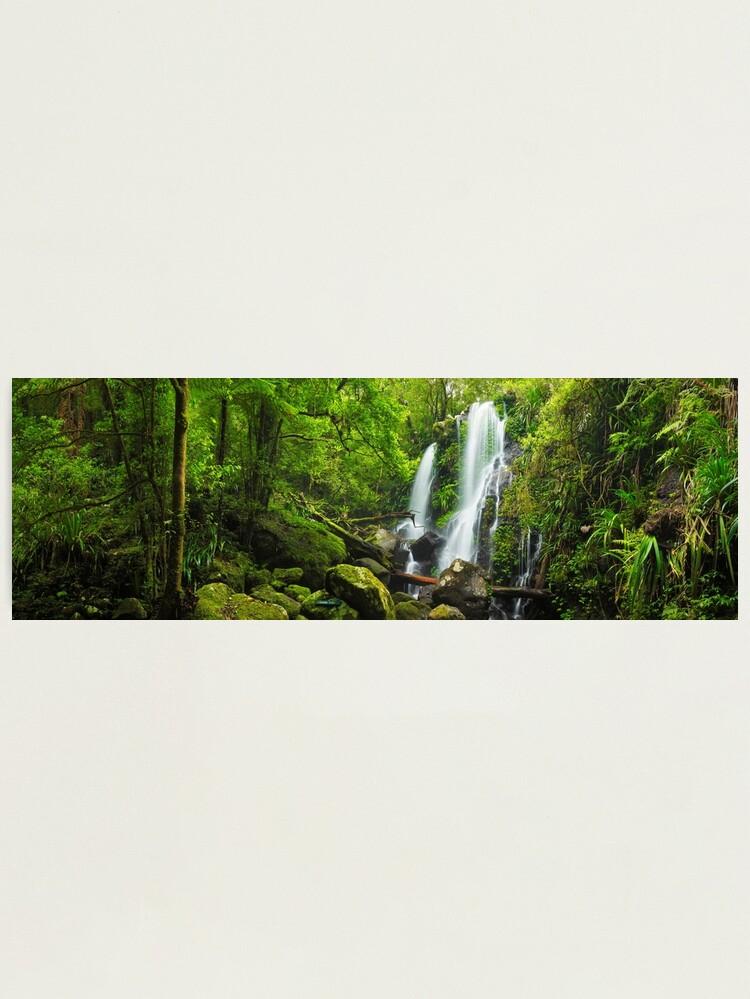 Alternate view of Chalahn Falls, Lamington National Park, Queesland, Australia Photographic Print