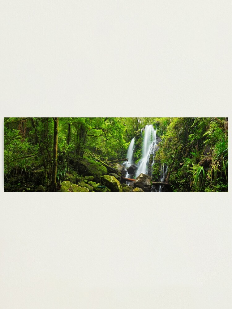 Alternate view of Chalahn Falls, Lamington National Park, Queesland, Australia Photographic Print