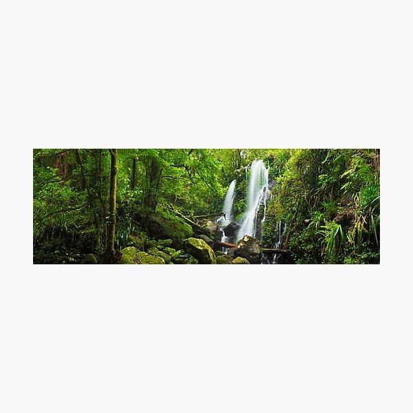 Chalahn Falls, Lamington National Park, Queesland, Australia Photographic Print