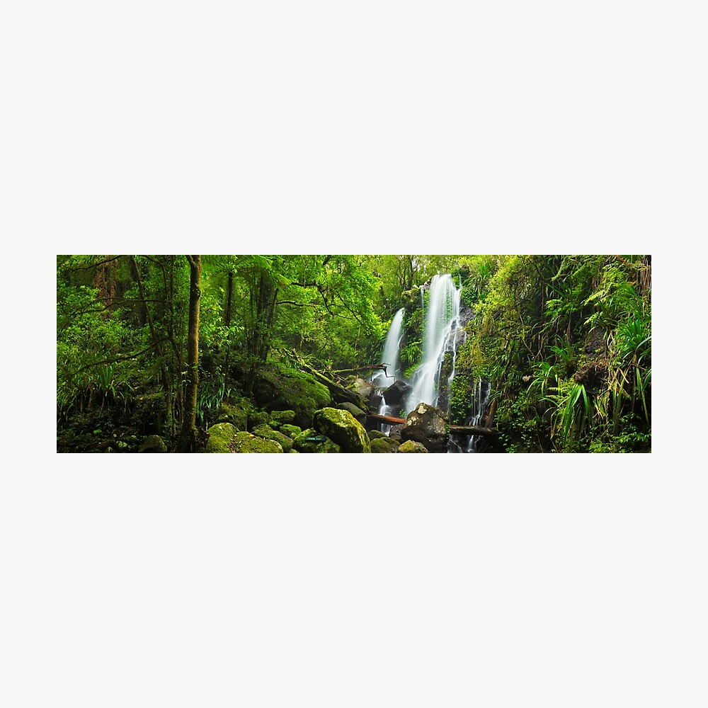 Chalahn Falls, Lamington National Park, Queesland, Australia Photographic Print