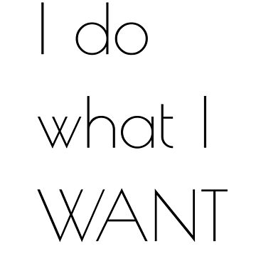 I Do What I Want T-Shirt Funny Tee  by Mystyleprime