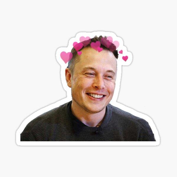 Elon Musk - w hearts Sticker