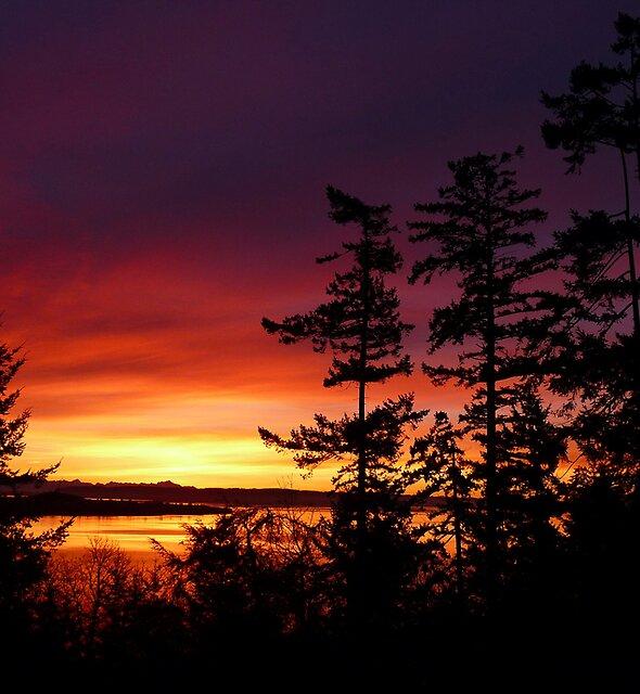 Oak Harbor Sunrise Two by Rick Lawler