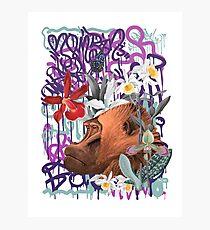 Graffiti Gorilla Philosopher Monkey Black Jungle Photographic Print
