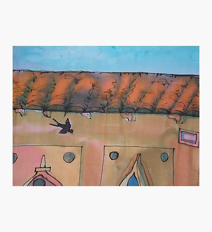 Swallow in Fierenze (Florence) Photographic Print