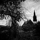 Treethorn by Karen E Camilleri