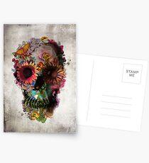 Postales Cráneo 2