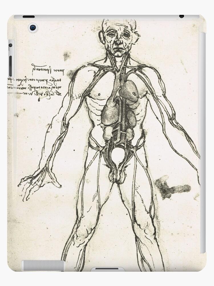 Vinilos y fundas para iPad «Figura anatómica de un hombre, para ...