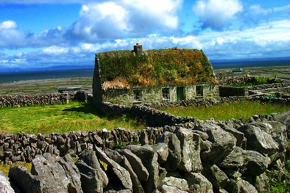 Quaint Old Cottage by Orla Cahill