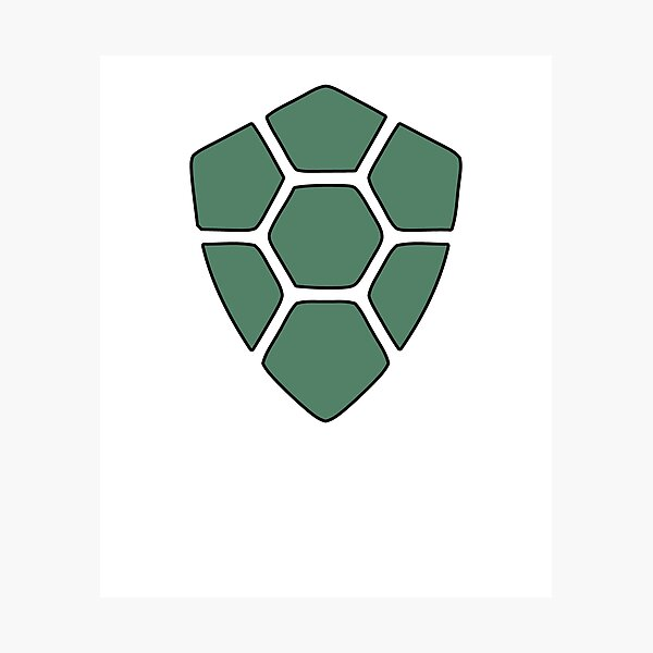 Turtlecoin Photographic Print