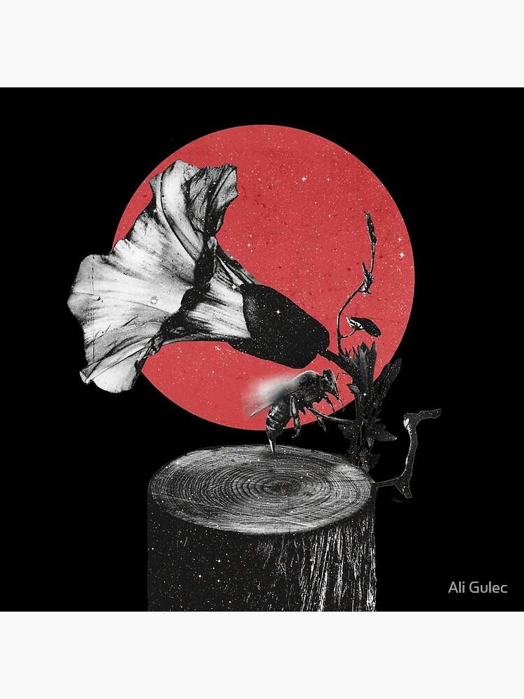 Gramophone by aligulec