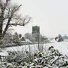 Snowy Lockington by karenlynda