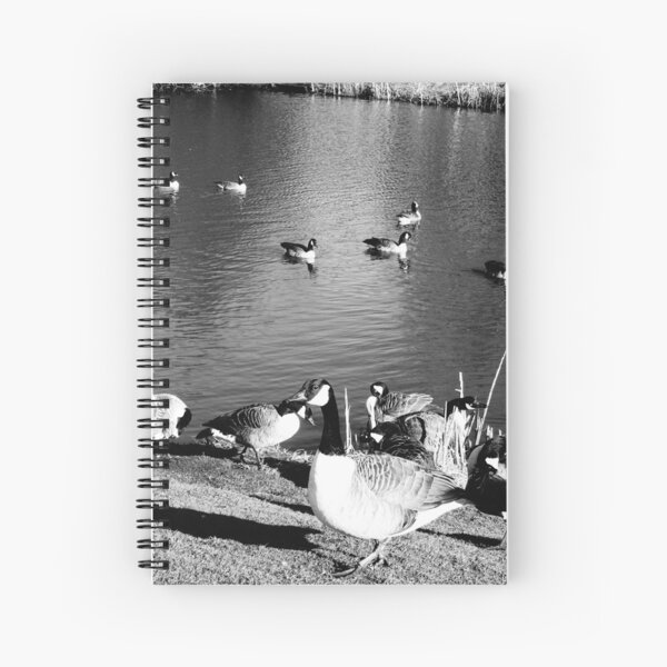 When ducks keep staring at you Spiral Notebook