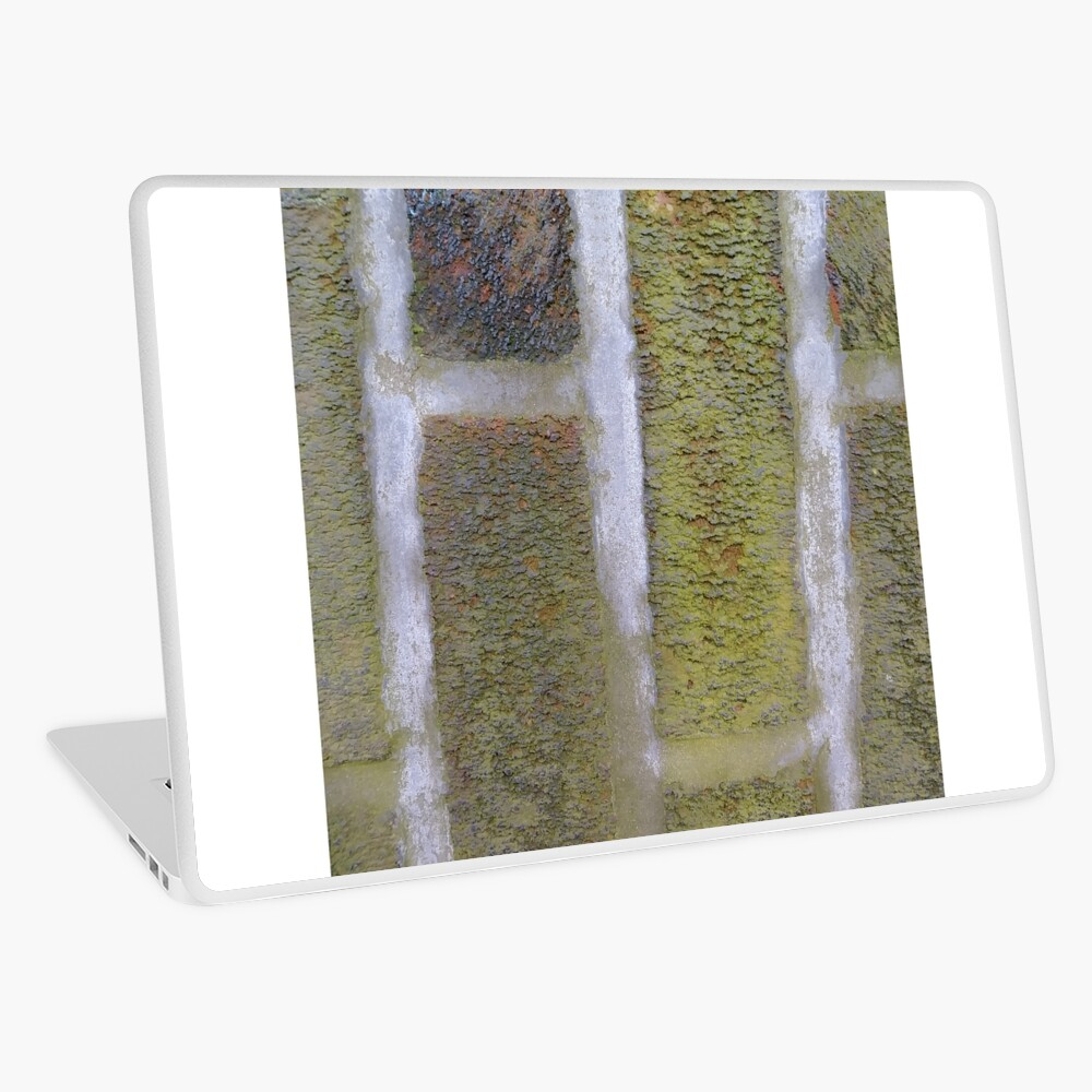 Green, surface, homogenous, smuth Laptop Skin