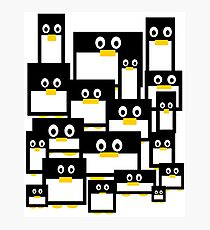 Penguin Diversity Photographic Print