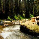 Sequoia Stream by HeavenOnEarth